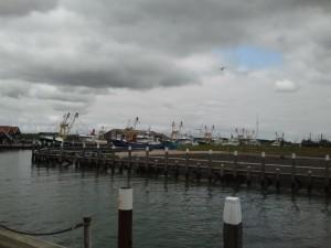 Hafen Oudeschild